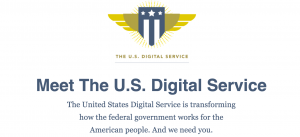 The U.S. Digital Service